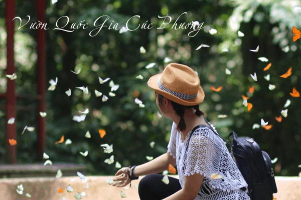 Bài viết tiếng Anh về vườn quốc gia Cúc Phương | Travelcar.vn