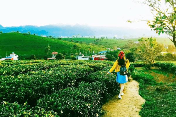 Cao nguyên rộng lớn và xinh đẹp nhất tỉnh Sơn La