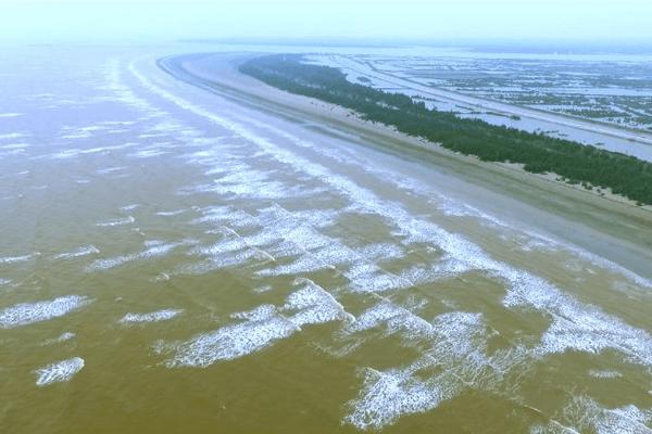 Cồn Đen Thái Bình - Cồn biển đẹp nhất khu vực miền Bắc