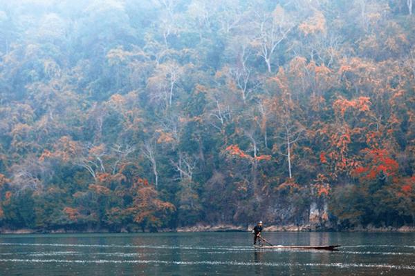 Khung cảnh hồ tràn ngập lá vàng mùa thu