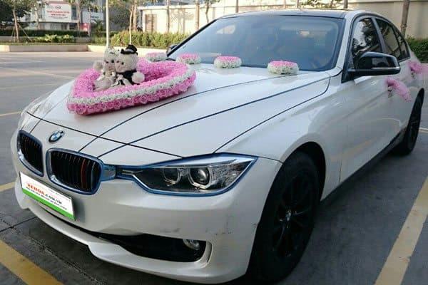 Kết hoa giữa đầu xe
