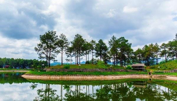 Bản Áng – rừng thông không chỉ ở Đà Lạt
