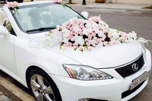 mẫu xe hoa cưới đẹp Lexus